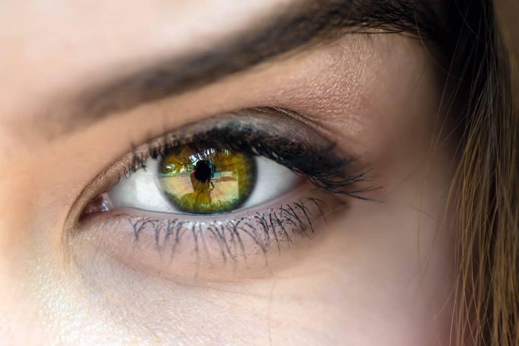 Lash Lift in Charleston, SC | Beautiful Semi-Permanent Eyelashes